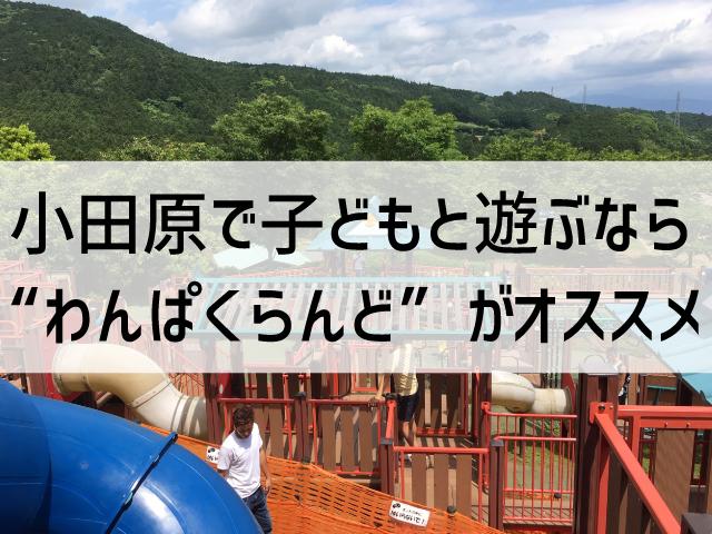 小田原で子供と遊ぶなら わんぱくランドがオススメ タイトル画像