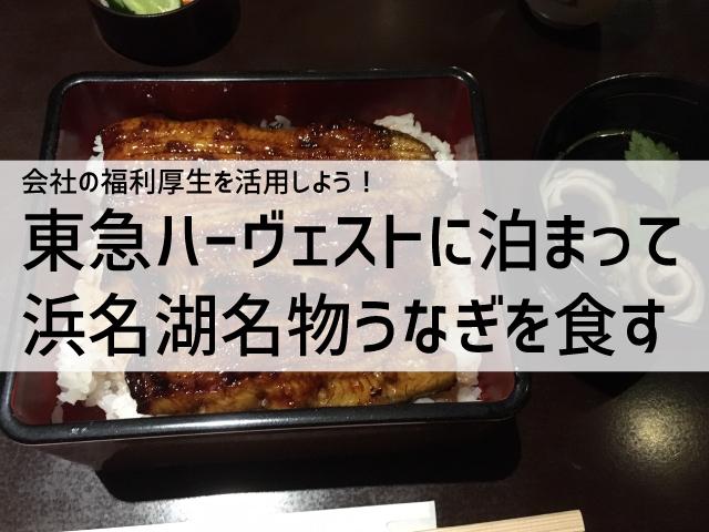 東急ハーヴェスト浜名湖に泊まって名物の鰻を食べたよ タイトル画像