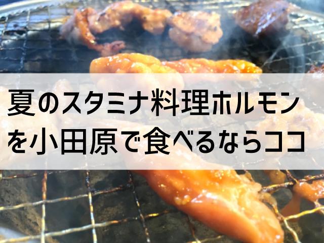ホルモン源屋タイトル画像